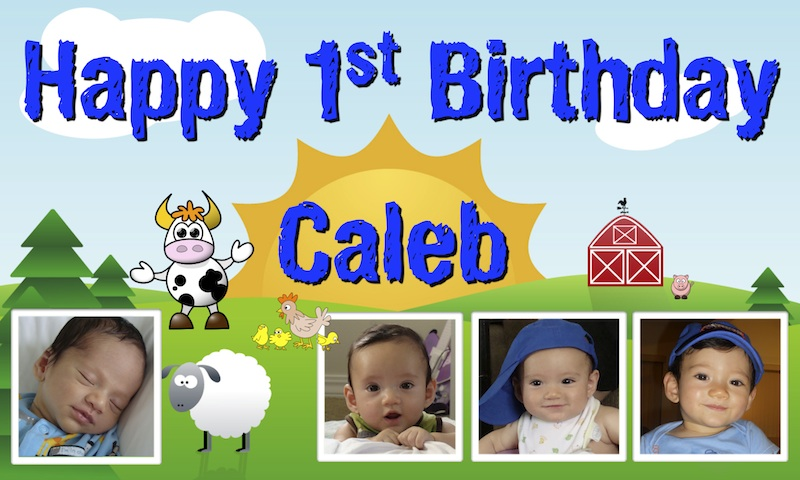 baby birthday banner designs ; sample-3ft-x-5ft-banner-barnyard