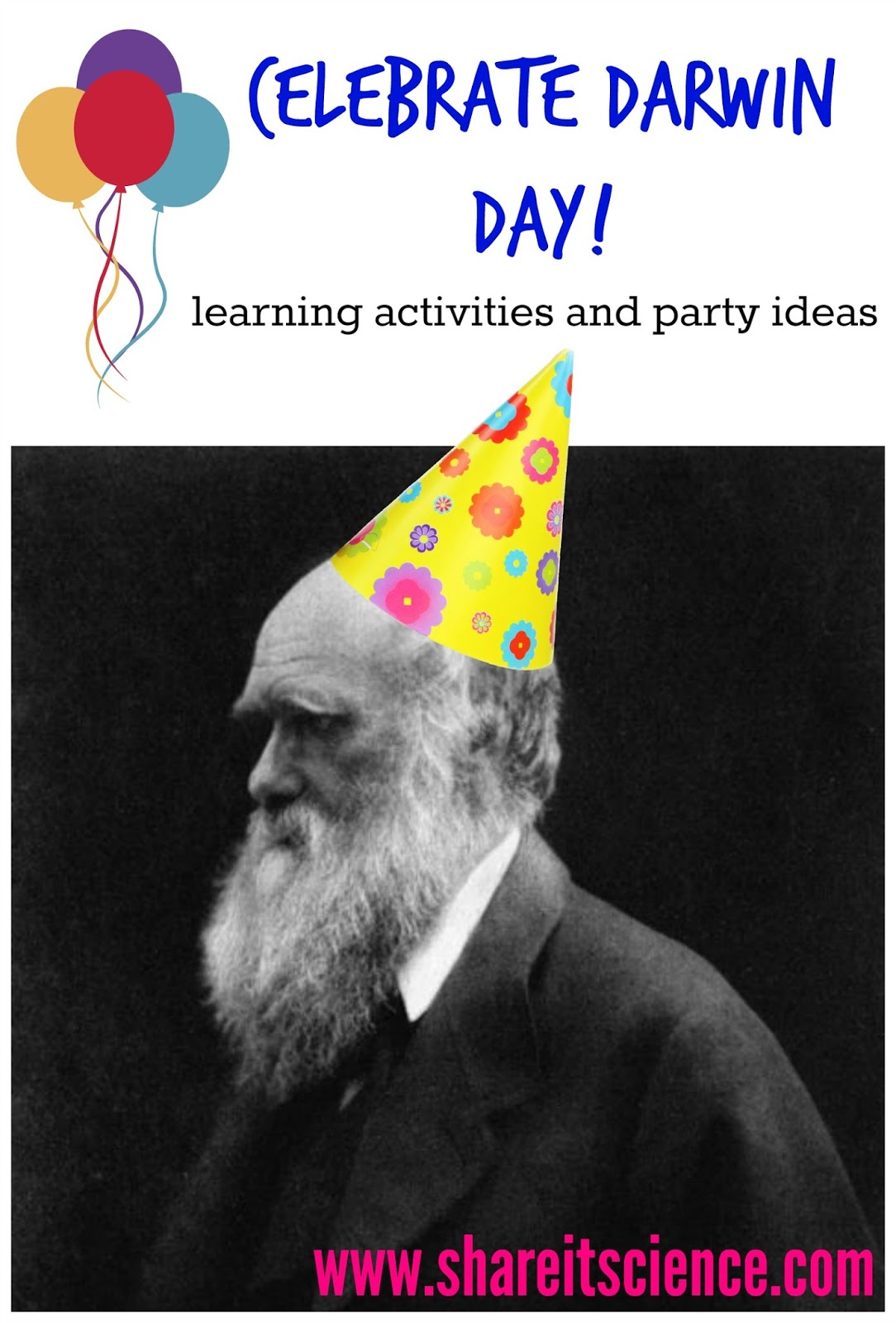 birthday day activities ; darwin%252Bday