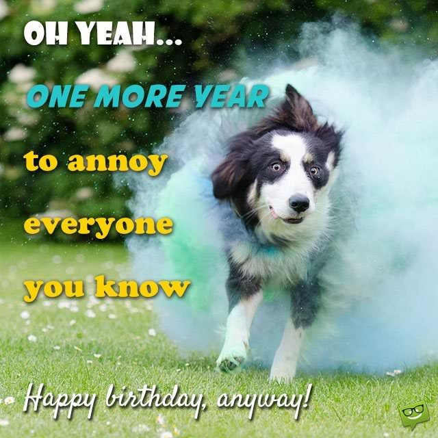 birthday funny picture messages ; Oh-yeah-one-more-year-to-annoy-everyone-you-know