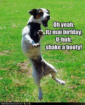 birthday funny picture messages ; happy-birthday-isabella-21433123