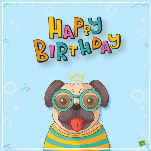 birthday messages and pictures ; birthday-pug-500x500