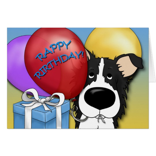 border collie birthday images ; border_collie_birthday_card-r986a36f63c2d4e02a7a4eed16bced8e0_xvuak_8byvr_540