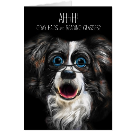 border collie birthday images ; funny_border_collie_birthday_gray_hair_and_glasses_card-r8e868349e4904acbb2c185a16d3fe93d_xvuat_8byvr_540