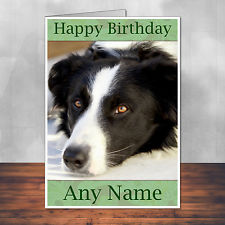 border collie birthday pictures ; s-l225