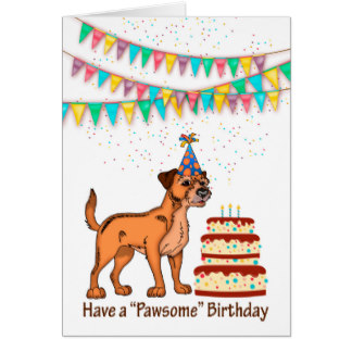 border terrier birthday ; border_terrier_dog_birthday_celebration_with_cake_card-rd2e446a1324142cd83ecbb8c3fa12d40_xvuat_8byvr_324