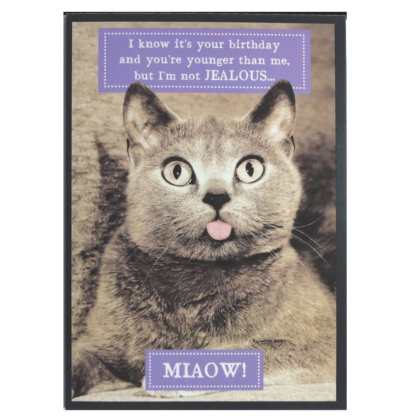 cat birthday greeting images ; cat-greeting-cards-cat-birthday-card-cat-themed-greeting-cards-mad-about-cats-free