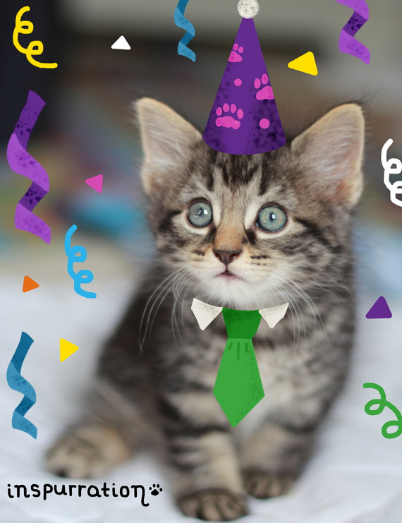 cat birthday greeting images ; il_570xN