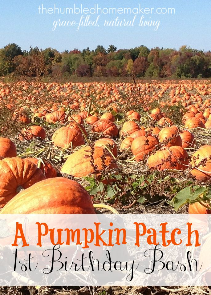 first birthday party activities ; A-Pumpkin-Patch-First-Birthday-Bash-TheHumbledHomemaker