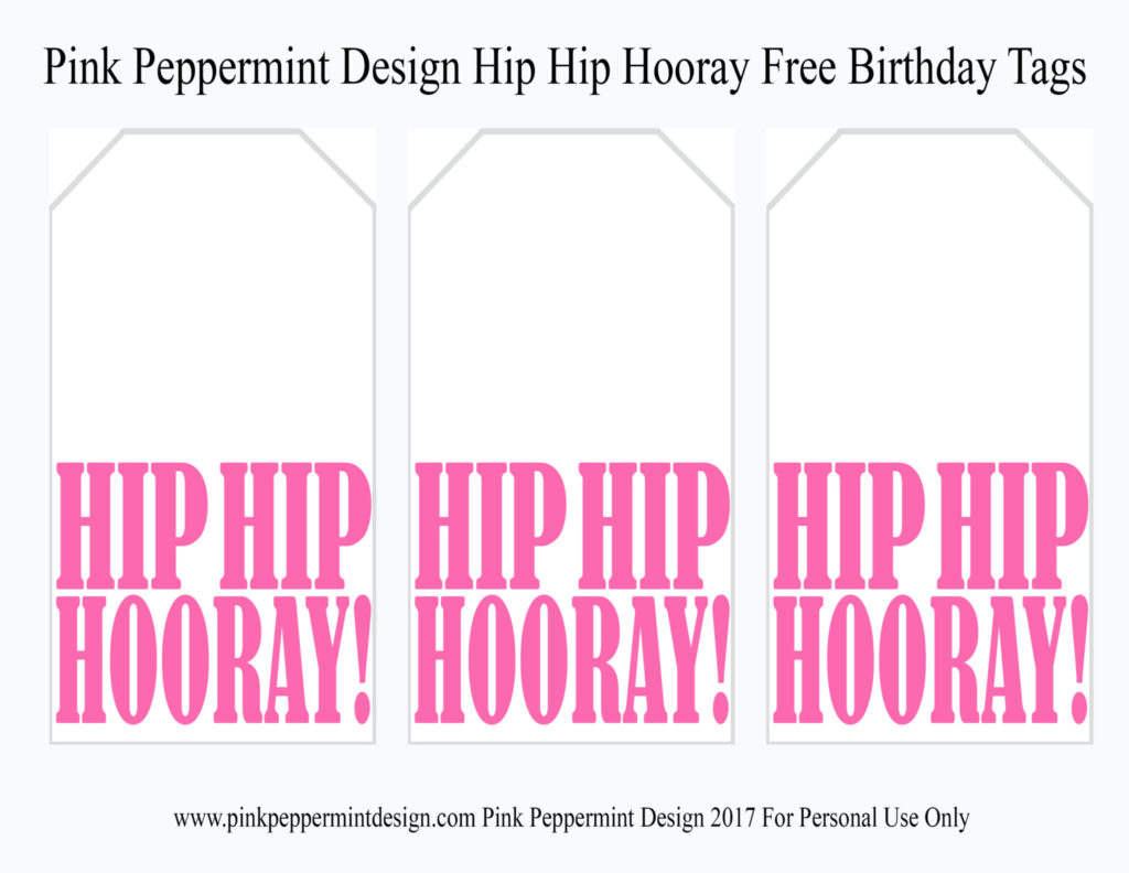 free printable birthday tags ; hip-hip-hooray-tags-Pink-Peppermint-Design-1024x792