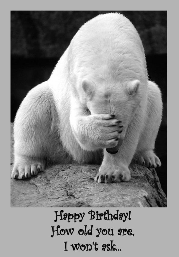 funny birthday greeting pictures ; funny-birthday-card-03