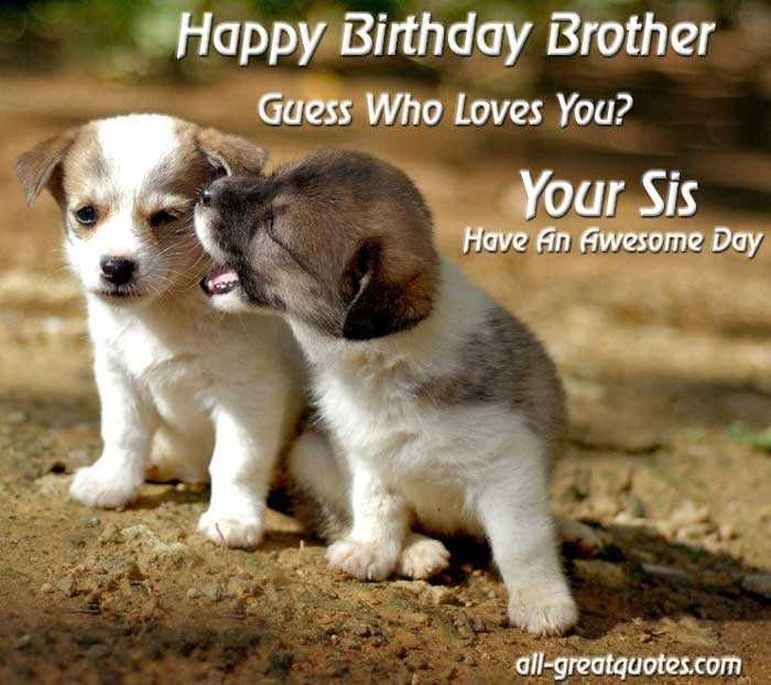 happy birthday brother photo frame ; 36ba368f90a9112d053499a5a8c92942--cute-puppy-wallpaper-brother-sister