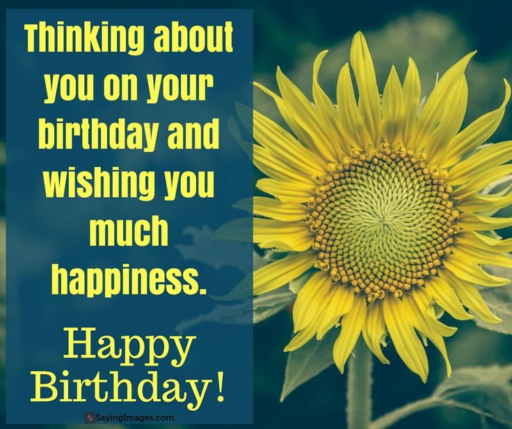 happy birthday greetings pictures ; 8cf0e6b02f821ffdb66be5e19def870e--happy-birthday-greeting-card-birthday-cards