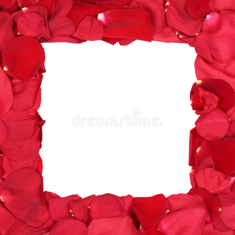 mother birthday photo frame ; frame-roses-birthday-valentine-s-mothers-day-c-red-copyspace-49697641