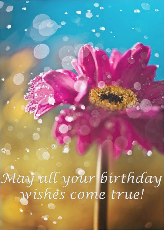 birthday wishes free images ; best-25-ecards-free-birthday-ideas-on-pinterest-of-free-birthday-cards-for-husband