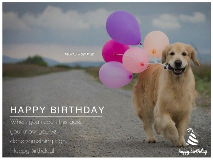 birthday wishes with dog picture ; 544419120257e92a7d9dceb6fc1a802d