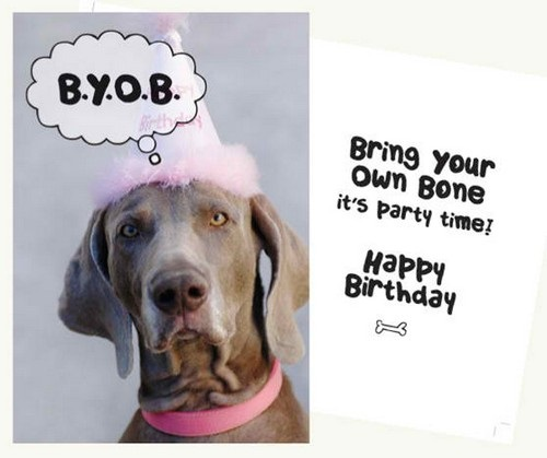 birthday wishes with dog picture ; birthday_wishes_for_a_dog_lover3