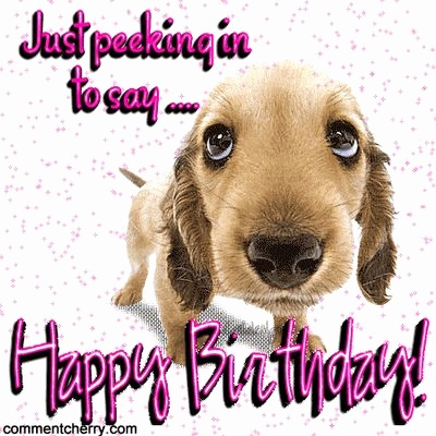 birthday wishes with dog picture ; happy-birthday-wishes-dog-new-91-best-dogs-images-on-pinterest-of-happy-birthday-wishes-dog