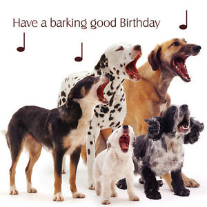 birthday wishes with dog picture ; s-l300