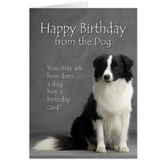 border collie happy birthday images ; from_the_border_collie_card-r294a89427fb64d86804739139445dadf_xvuat_8byvr_324