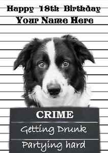 border collie happy birthday images ; s-l300