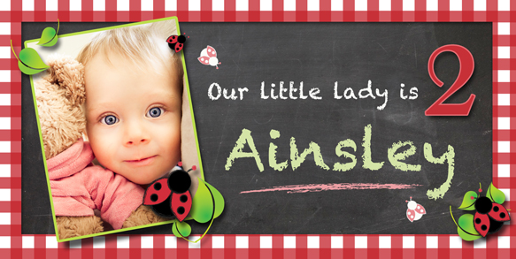 custom birthday banners with photo ; Little-Ladybug-Birthday-Banner-Red-Gingham-with-photo-LG