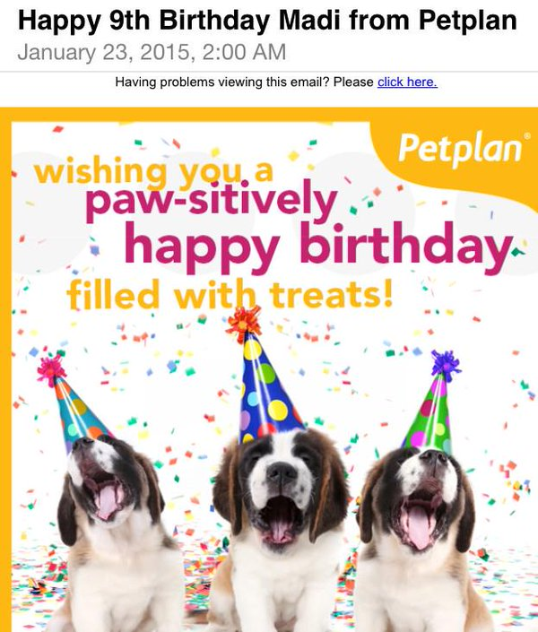dog picture birthday wishes ; B8DWQifCIAAJAmm