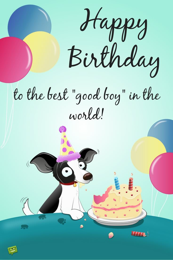 dog picture birthday wishes ; Birthday-wish-for-cute-dog-who-is-a-good-boy