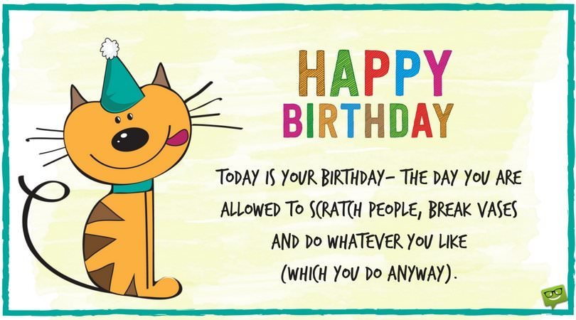 dog picture birthday wishes ; Funny-birthday-wish-for-pet-cat-on-picture-with-cute-cat