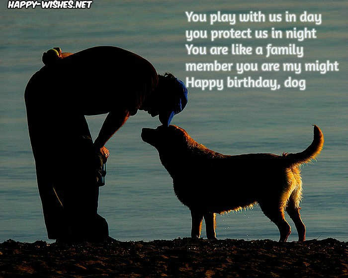 dog picture birthday wishes ; Happy-birthday-quotes-for-Dogs2