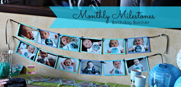 first birthday monthly photo banner ; IMG_93302