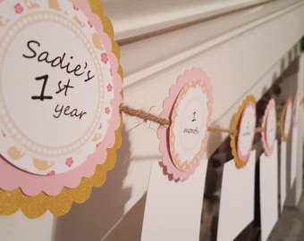 first birthday monthly photo banner ; il_340x270