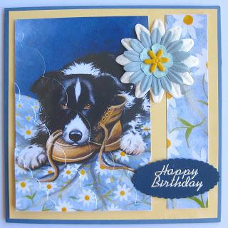 free border collie birthday cards ; 5bdd3db19f38f47af22231a08955962a