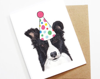 free border collie birthday cards ; il_340x270