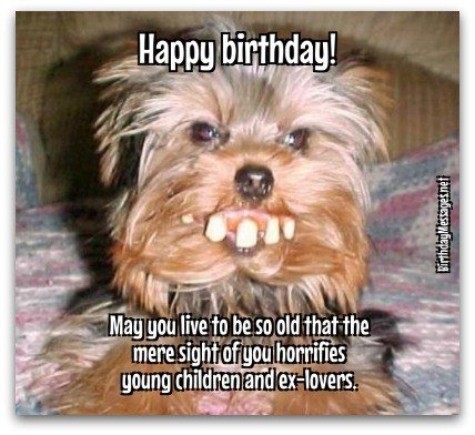 funny happy birthday wishes message ; xBirthday-wishes-funny-wishes-1A