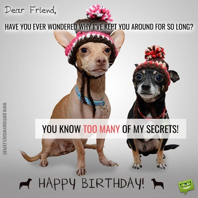 funny picture happy birthday wishes ; You-know-too-many-of-my-sec