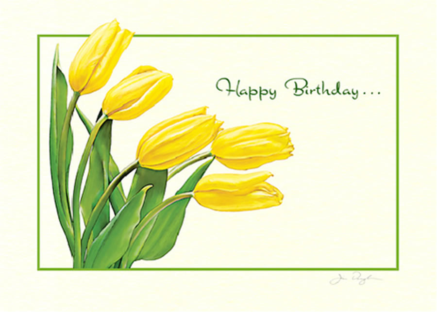 greeting cards for birthday design ; Special-Visual-Card-Tulips-Illustration-for-Birthday-Greeting-Celebration-by-Jim-and-Blanka-Santa-Monica