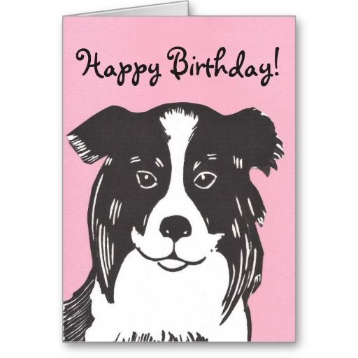 happy birthday border collie ; 4fd6d3553e480807bfb452c3e4143032--border-collie-happy-birthday-cards
