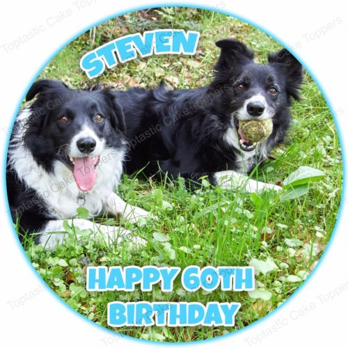 happy birthday border collie ; s-l500