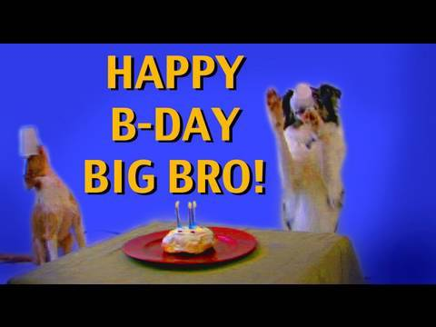 happy birthday brother clipart ; hqdefault