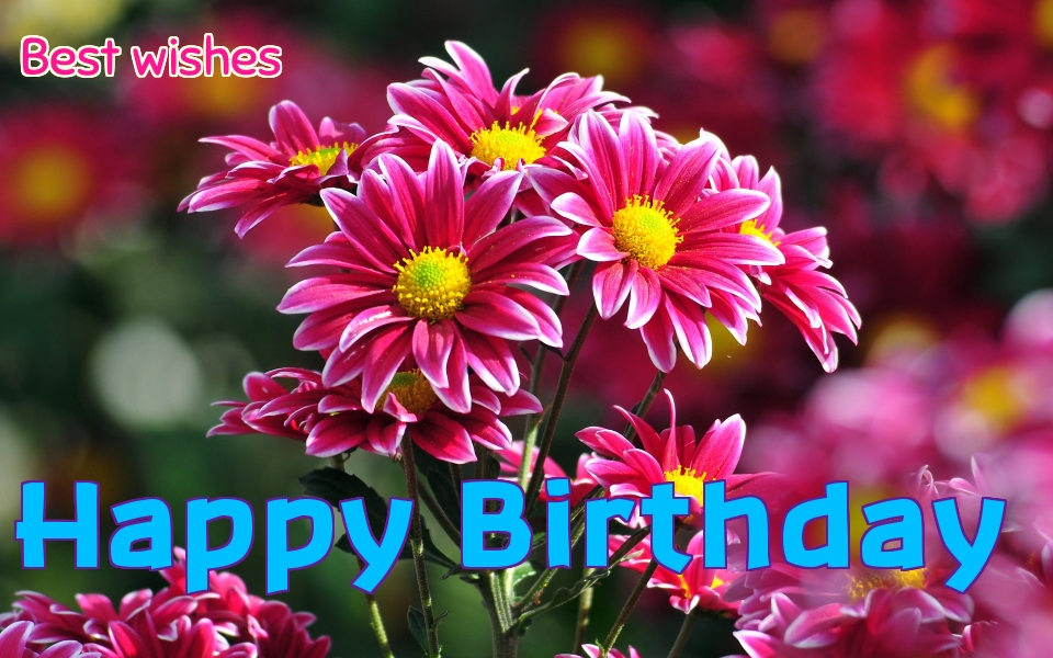 hd wallpapers for birthday wishes ; Happy-Birthday-Flowers-7