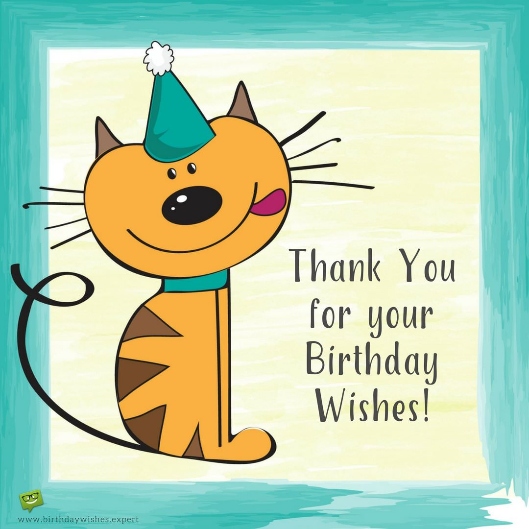 reply message for birthday greetings ; Cute-image-with-thank-you-note-for-birthday-wishes-and-a-kitten