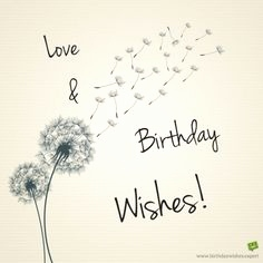 return message for birthday wishes ; birthday-wishes-return-quotes-elegant-thank-you-messages-for-birthday-wishes-quotes-and-notes-of-birthday-wishes-return-quotes