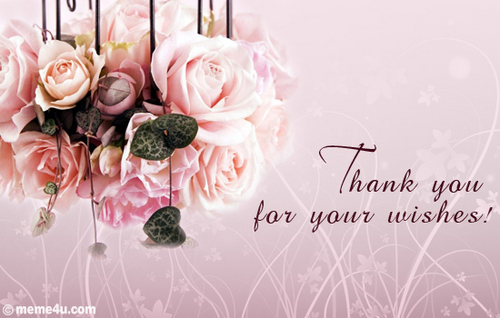 thank you wallpaper for birthday wish ; Thank-you-Berni-for-all-your-lovely-Birthday-Wishes-xx-yorkshire_rose-20281741-500-318