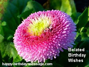 belated happy birthday wishes message ; Belated-happy-birthday-wishes-messages-sms