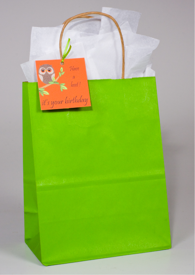 birthday bag tags ; apple-green-stripe-recycled-paper-gift-bags-tulsai-llc-gift-bag-labels-l-6daef7e748ed71bd