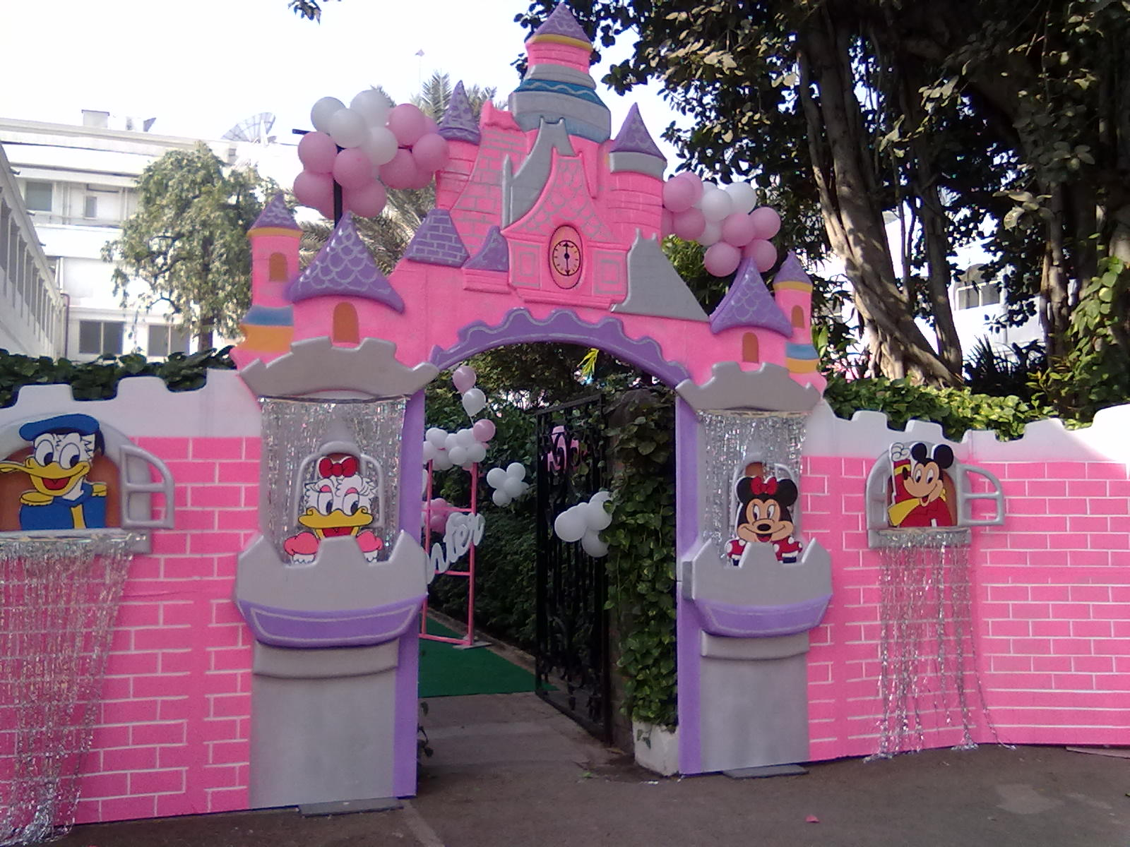 birthday party ideas and themes ; 04122011385