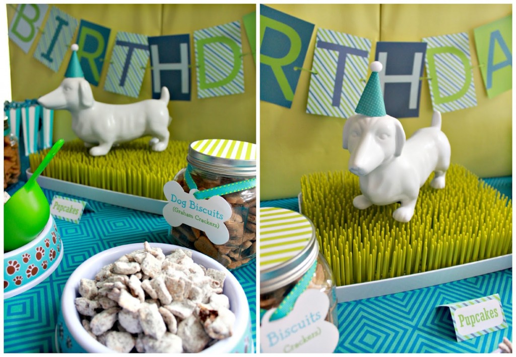 birthday party ideas and themes ; Dog-birthday-party-themes-1024x710