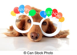 birthday puppy clipart ; happy-birthday-dog-dachshund-puppy-wearing-happy-birthday-glasses-also-available-in-vertical-stock-photograph_csp31490097