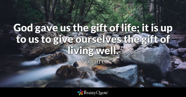 brainy quotes birthday message ; voltaire1