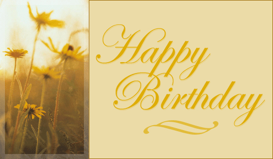 free birthday greeting cards to send by email ; 297e7e86a90a908d82154fa69351a574